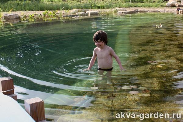 Как самому очистить пруд